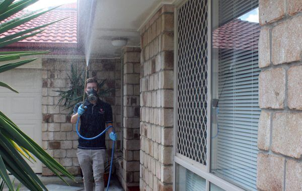 pest control Broadbeach Pest Spray