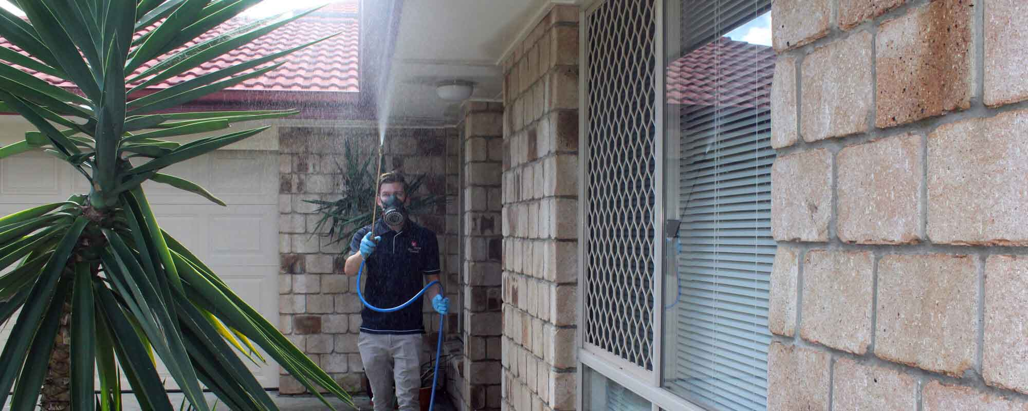 Building Pest Inspection